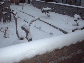 休日の雪かき_f0031037_19285564.jpg