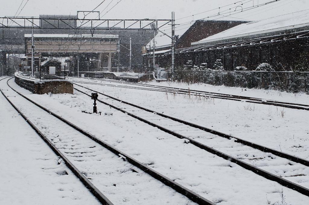 念願叶って雪の京都でパチリ♪。_d0148541_23122377.jpg