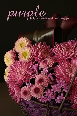 紫いっぱいの花籠_d0124248_16404137.jpg