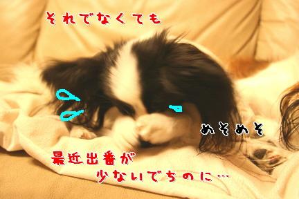 d0013149_812116.jpg