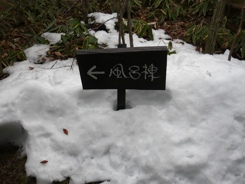 九重の旅~前編_b0083267_23274859.jpg