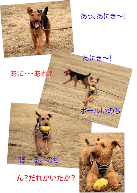 a0035678_1834277.jpg