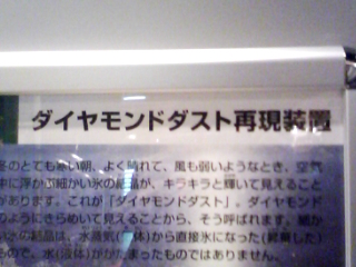 e0016542_2181979.jpg