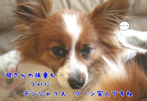 d0013149_1055981.jpg
