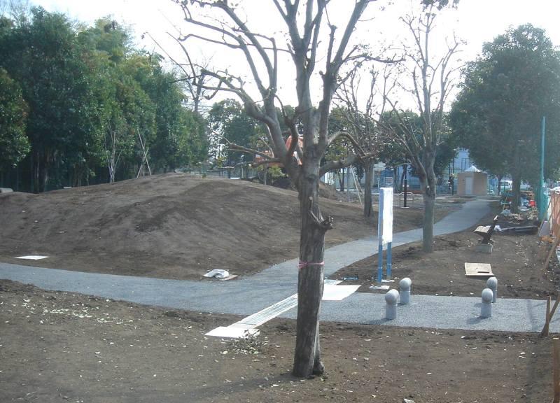 小川緑地整備完了間近_f0059673_23291768.jpg