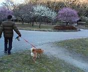 公園にて_b0011075_942854.jpg