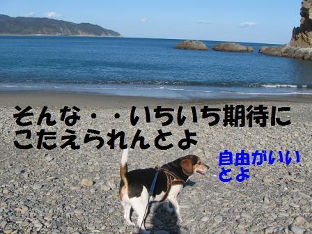 d0104209_22243631.jpg