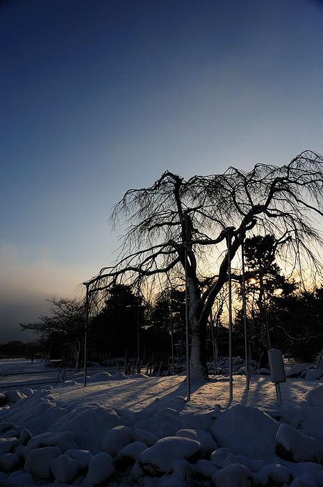 おいでやす~大雪の嵐山へ♪ 上り編_f0032011_21443890.jpg
