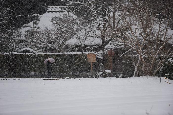 おいでやす~大雪の嵐山へ♪ 上り編_f0032011_21511197.jpg