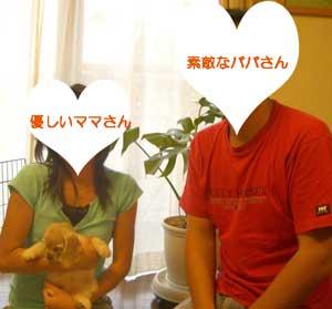 子犬お届け大全集★パート2_c0070714_14394973.jpg