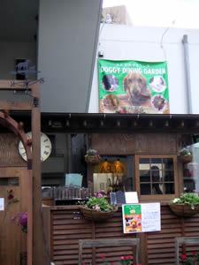 西東京市のワンちゃん好きのみなさんへ。_d0035245_19414796.jpg
