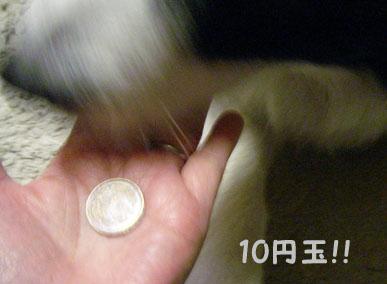 f0114893_19361542.jpg