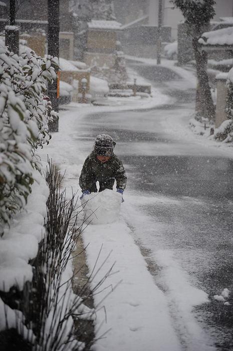 おいでやす~大雪の嵐山へ♪ 折り返し編_f0032011_19513177.jpg