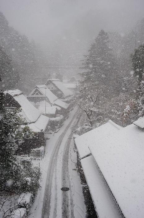おいでやす~大雪の嵐山へ♪ 折り返し編_f0032011_19521286.jpg