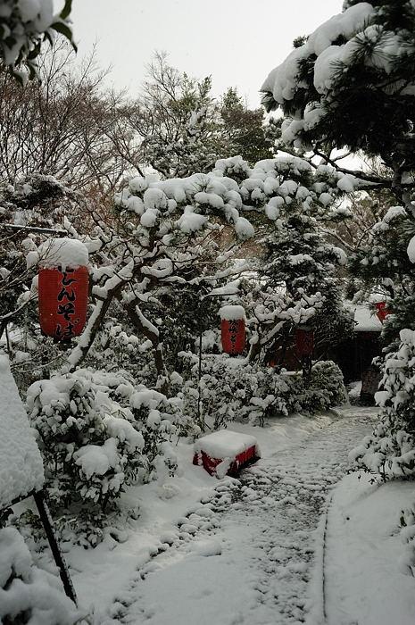 おいでやす~大雪の嵐山へ♪ 折り返し編_f0032011_1952176.jpg