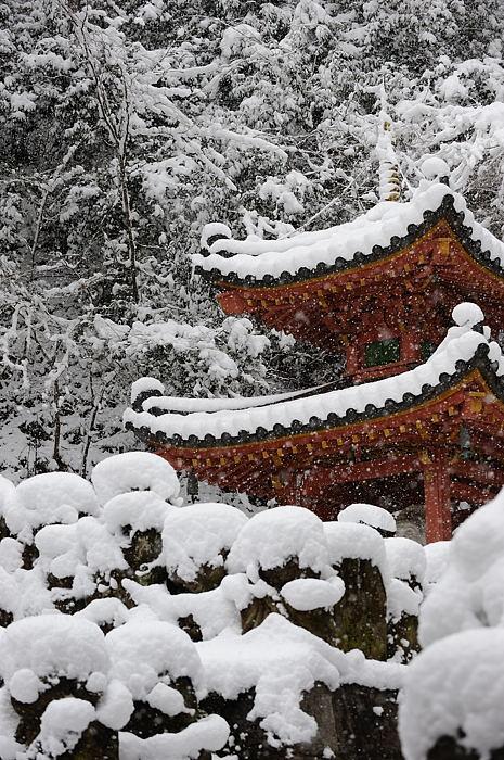 おいでやす~大雪の嵐山へ♪ 折り返し編_f0032011_19525055.jpg
