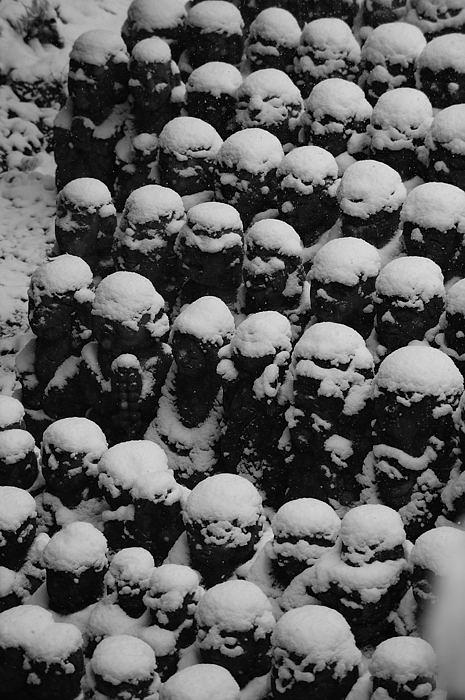 おいでやす~大雪の嵐山へ♪ 折り返し編_f0032011_19533324.jpg