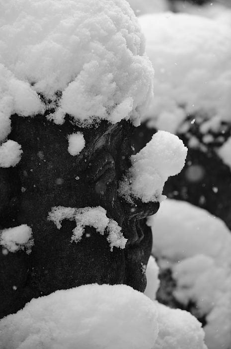 おいでやす~大雪の嵐山へ♪ 折り返し編_f0032011_1953865.jpg