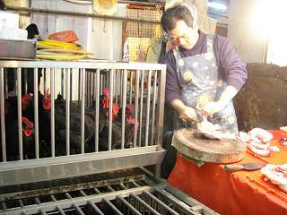 台湾・・・4 市場_b0102217_22591650.jpg
