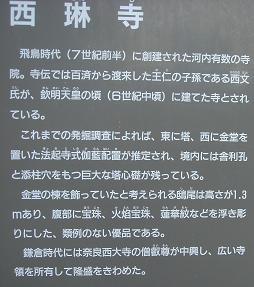 f0000521_10404393.jpg