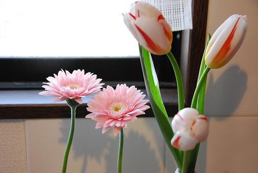 春の兆し_c0099133_14103430.jpg