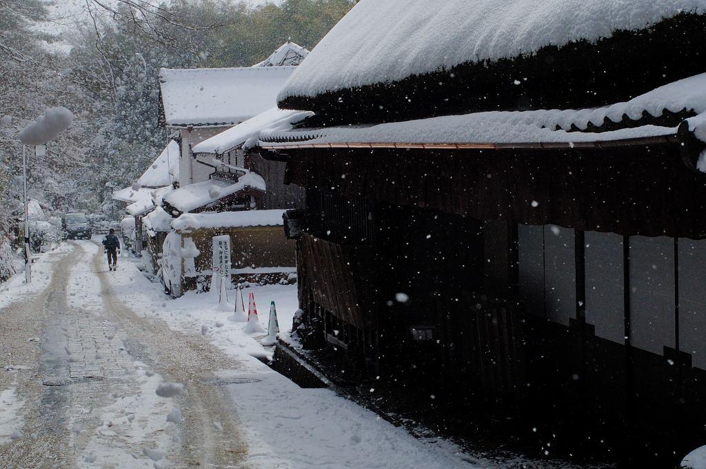 2月24日の京都・雪~駅~サル_d0148541_2147847.jpg