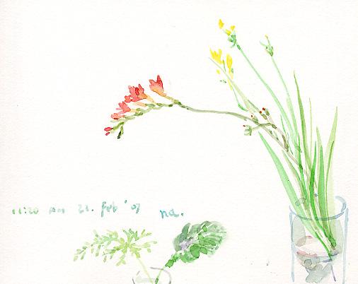 教室の花_d0115092_8415563.jpg