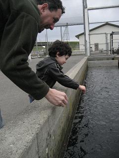 お魚がいっぱいいたよ!_c0119197_1011779.jpg