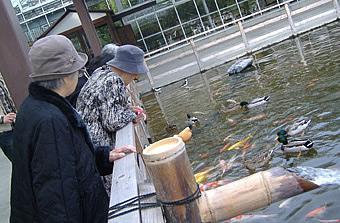 神戸花鳥園へ。<アクティブライフ山芦屋/グループホーム>_c0107602_19231463.jpg