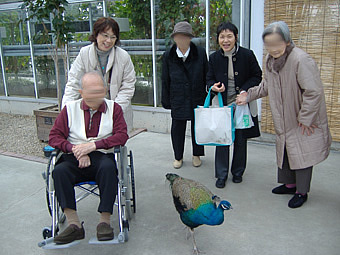 神戸花鳥園へ。<アクティブライフ山芦屋/グループホーム>_c0107602_19235317.jpg