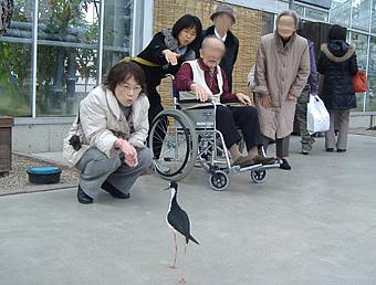 神戸花鳥園へ。<アクティブライフ山芦屋/グループホーム>_c0107602_1924819.jpg