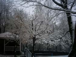 吹雪の後_f0146620_2230670.jpg