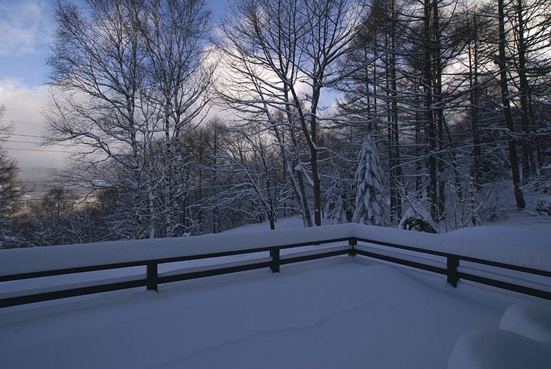 どか雪が降りました_d0102327_1559104.jpg