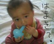 d0064329_2054628.jpg