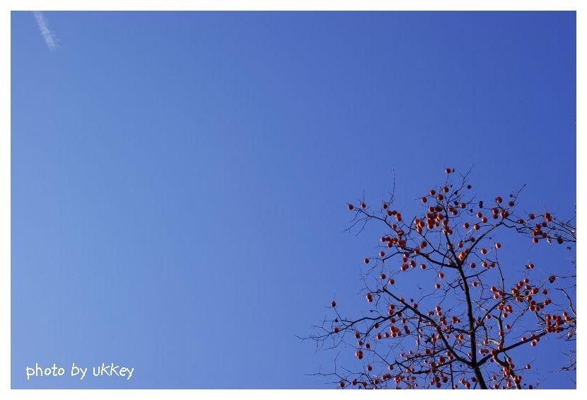 いつかの青い空_e0063851_015317.jpg