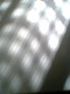 d0095471_2362084.jpg