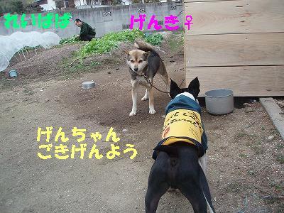 c0084706_20121394.jpg