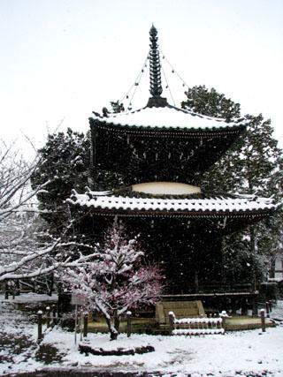 清涼寺(嵯峨釈迦堂)など_e0048413_22192195.jpg