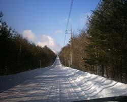 雪景色_f0146620_17515789.jpg
