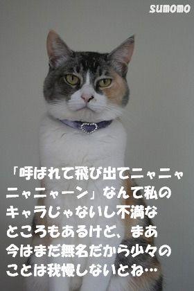 f0063729_1532042.jpg