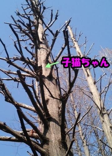 b0023934_2133276.jpg