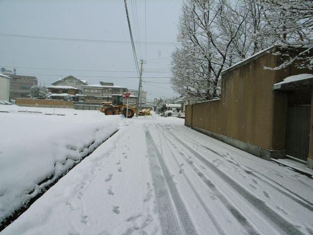 冬の終わり。_e0084756_117370.jpg