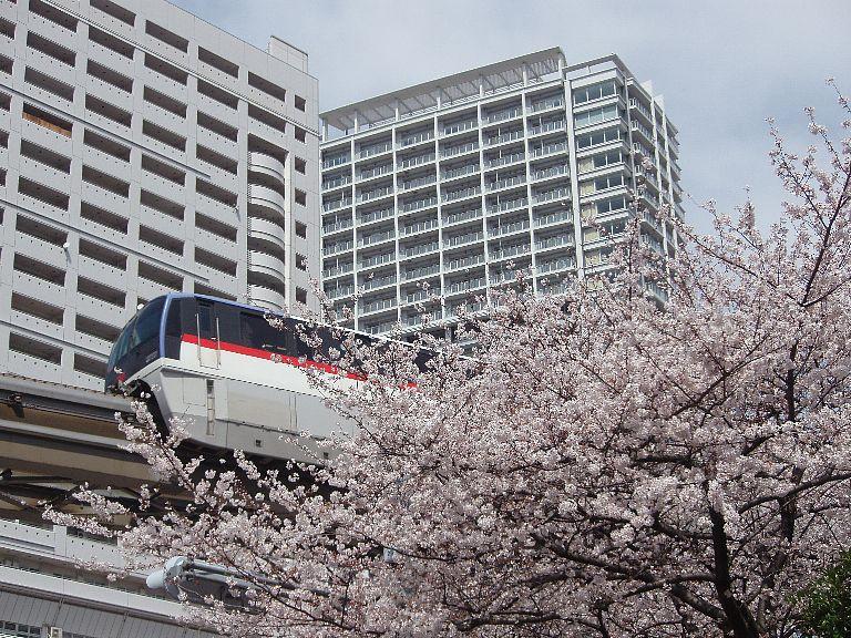 桜モノレール 1