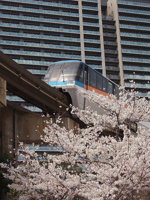 桜モノレール 2