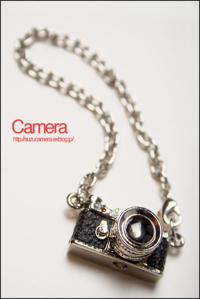 小さなカメラ_f0100215_0165247.jpg