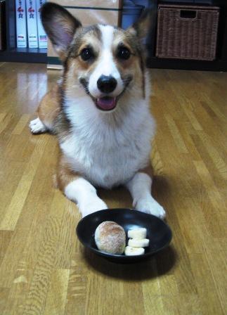 yummy のパン①_f0155118_22184439.jpg