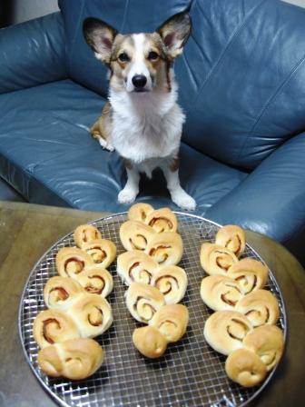 yummy のパン①_f0155118_22401329.jpg