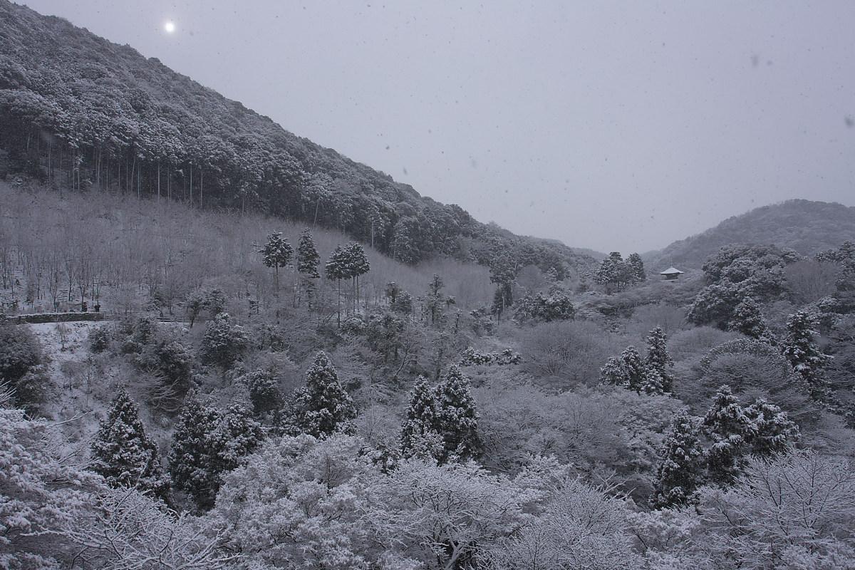 京都 雪景色 <東山> 2_f0021869_1632325.jpg