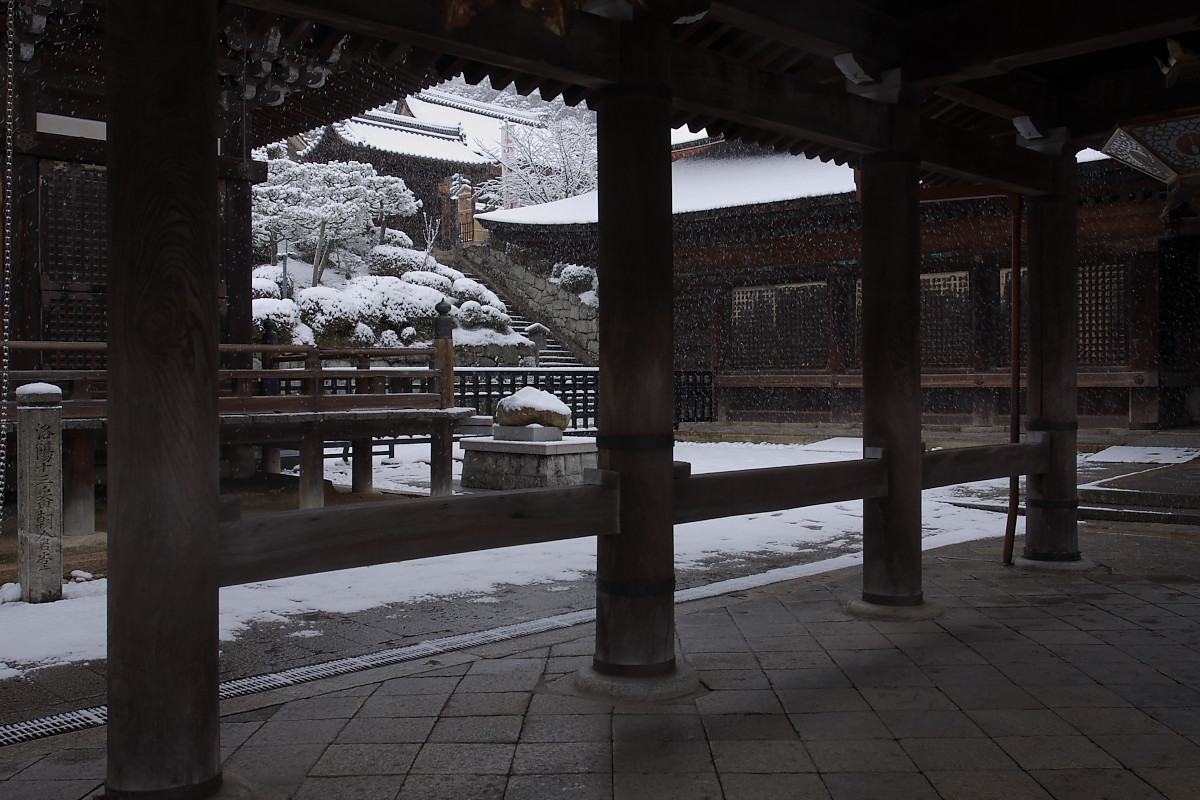 京都 雪景色 <東山> 2_f0021869_16362269.jpg