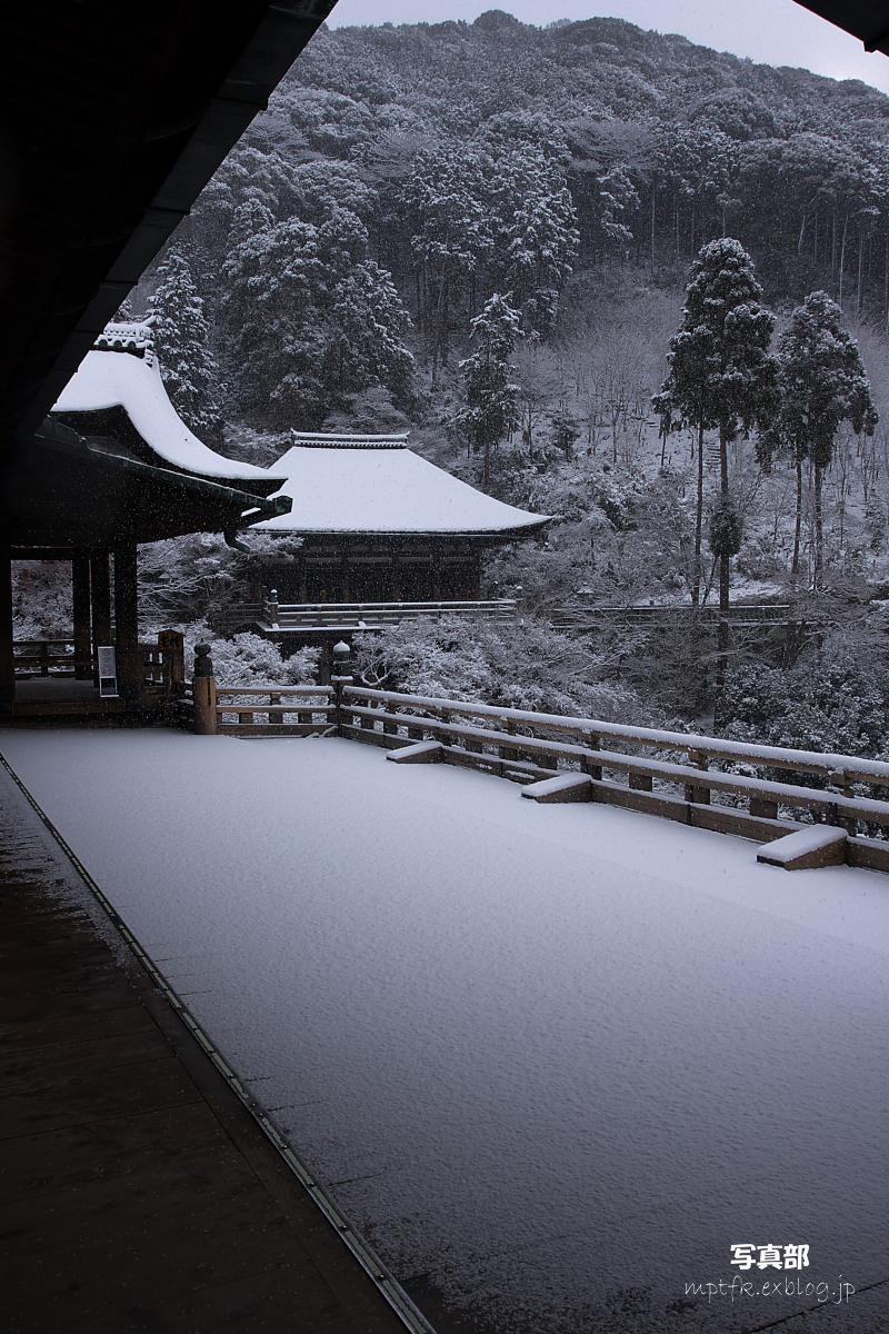 京都 雪景色 <東山> 2_f0021869_1646042.jpg